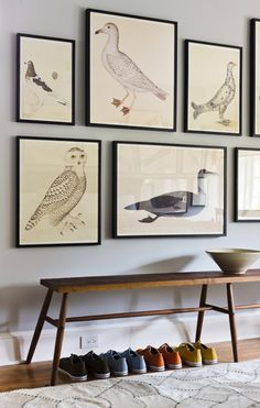 Olaf Rudbeck bird prints.  Nuts over these!