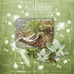A Touch of Winter Designs by Helly Elements:  http://www.gottapixel.net/store/product.php?productid=10023276&cat=&page=1 Papers:  http://www.gottapixel.net/store/product.php?productid=10023275&cat=&page=1 Ice Frames:  http://www.gottapixel.net/store/product.php?productid=10023309&cat=&page=1