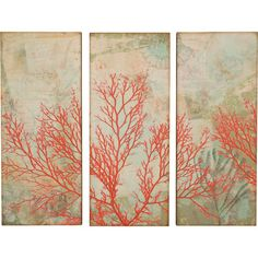 Add a coastal touch to your gallery or entryway with this delightful wall decor, featuring a sea fan print on an aqua blue background.