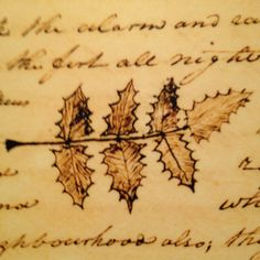 Scientific writing from Lewis and Clark's expedition