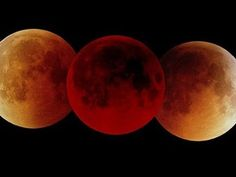 Eclipse A triple image of a total lunar eclipse on July which lasted an hour and 47 minutes. A lunar eclipse of this length will not be surpassed for the next years. - Be they white, grey, orange, or red, a lunar eclipse is a spectacular vision. Triple Image, Cosmos, Eclipse Lunar, Total Eclipse, Blood Red Moon, Ciel Nocturne, Shoot The Moon, Space And Astronomy, Super Moon