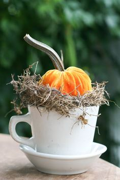 Ten Fabulous Fall Centerpieces... Use chipped or extra coffee cups as a cute little centerpiece