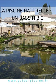 Biologique, Swimming, Mansions, Guide, House Styles, Circuit, Outdoor Decor, Alternative, Gardens