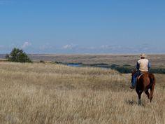 'Hoewel hij nooit in een prairie was geweest, deed dit landschap hem denken aan de televisieserie RAWHIDE. Aan het begin van iedere aflevering reed een cowboy op zijn paard, met een lasso, door een kaal landschap'.  blz.109