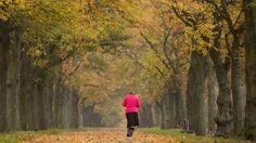 Jesenná rovnodennosť nastane už v stredu: Na čo sa musíme pripraviť?