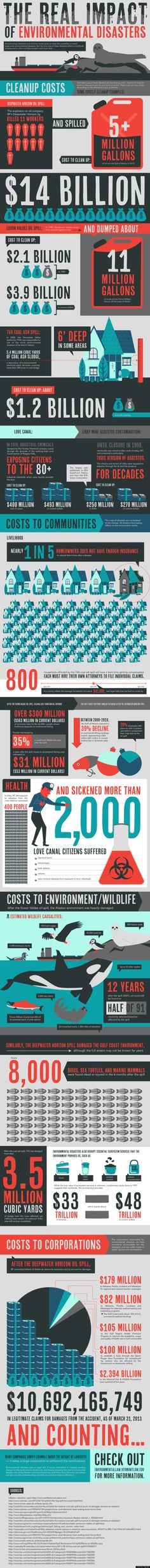 Environmental Disasters Prove They Don't Heal Themselves (INFOGRAPHIC)