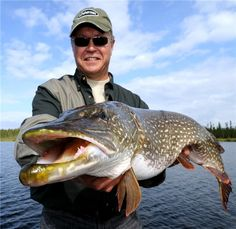 Go ahead and kiss it! Ummm, maybe not. To catch big pike like this, you have to follow tips like these ones here: http://www.worldfishingnetwork.com/users/gord-pyzer/blog/count-your-way-to-outrageous-lake-trout-northern-pike-and-walleyes-258997.aspx