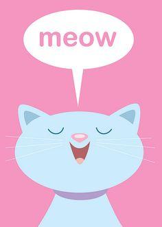 Cats Meow by Jerrod Maruyama, via Flickr