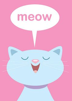 Cats Meow by Jerrod Maruyama, via Flickr