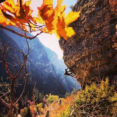 Autumn Climbing - American Fork Canyon - (via Maddie Ford)