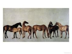 Mares and Foals Without a Background, circa 1762 Giclee Print by George Stubbs at Art.com