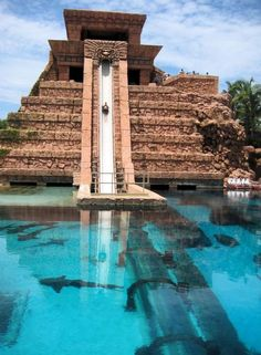 Atlantis water slide - Yes those are sharks!
