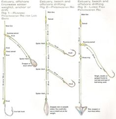 1000 images about surf pierfishing on pinterest rigs for Best saltwater fishing line