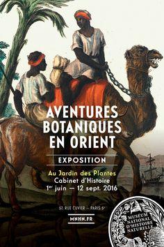 Aventures botaniques en Orient