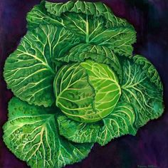 Susan Hillier - The Society of Botanical Artists Fruit Illustration, Food Illustrations, Botanical Illustration, Veggie Art, Watercolor Fruit, National Portrait Gallery, Plant Art, Leaf Art, Patterns In Nature