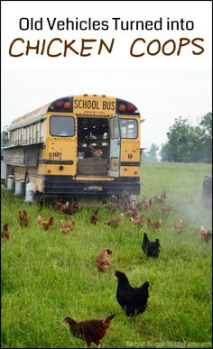 See our collection of beat up vehicles re-purposed into chicken coops!