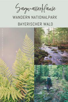 Im Nationalpark Bayerischer Wald findest du Natur in seiner absoluten Rohfassung. Eine wunderschöne und nicht anstrengende Wanderung ist die Tour zur Sagwasserklause. Du streifst durch Urwald, üppiges Grün und entlang des rauschenden Bachs. Die Sagwasserklause ist ein kleiner Stausee und wurde früher zum Triften von Holz errichtet. Deine Wanderung könntest du theoretisch bis zum Berg Lusen ausdehnen. Infos zur Sagwasserklasue findest du auf meinem Blog.