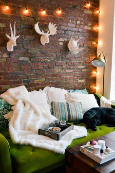 ideas for night in, apartment decor, living room, deer head, moose had, green couch, cozy, twinkle lights