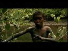 Conta a estoria de Binho, um garota índio Tupinambá do Sul da Bahia.