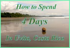 All about our time in Uvita, Costa Rica with kids--surfing, whales, dining, swim, wildlife, waterfalls,.. so much!