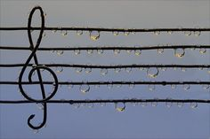 """love music :) I like the little """"bubble notes""""!"""