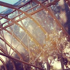 "Via Twitter user @dontbecynical  "" #pretty #wedding #venue ""http://instagr.am/p/RV9APkOBqi/"