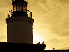 Lighthouse - Echo Park, California – 35mm Film