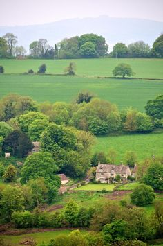 Shot on our way to Painswick in the southern Cotswolds. What a place to live! I wish that we'll be lucky enough to retire to a place as beautiful and serene as the Cotswolds one day...