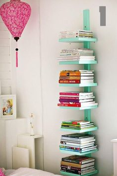 bookshelf .... off set the shelves... stagger them so the cat can step up one by one...