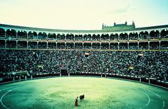 Bull Fighting  Madrid, Spain