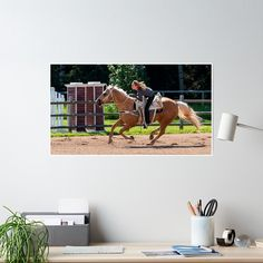 High-quality posters to hang in dorms, bedrooms or offices. Multiple sizes are available. Printed on semi gloss poster paper. Additional sizes are available. Heartland Amy, Offices, Bedrooms, Posters, Horses, Printed, Paper, Fun, Products