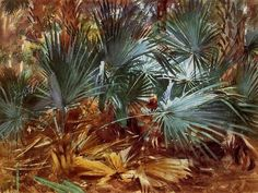 Palmettos, 1917 by John Singer Sargent. Impressionism. landscape. Private Collection