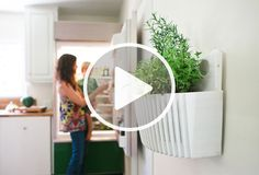 WoollyPocket Introduces the Living Wall Planter