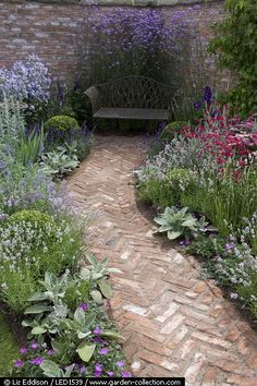 Herringbone brick path running through a courtyard garden.