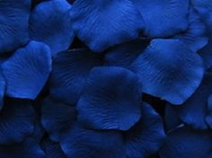 500  ROYAL Blue Horizon  Silk Artificial Rose Petals Wedding Favor Decoraition Flower Girl
