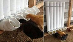 Tavuk yemlikleri muhteşem
