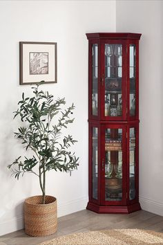 Lorona Floor Standing 5 Sided Lighted Corner Curio Cabinet