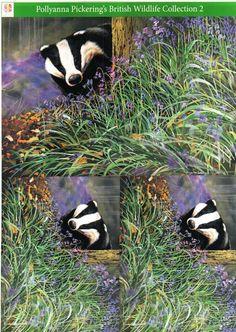 Pollyanna Pickering British Wildlife Collection 2 - traditional decoupage #7 - badger