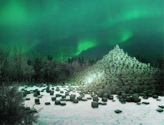 boreal babel - fala atelier