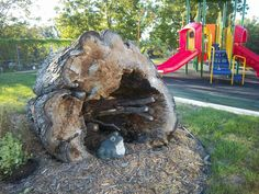 Today in Preschool: Outdoor Classrooms: A Celebration