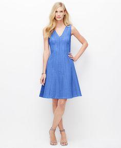 Seamed Eyelet Dress