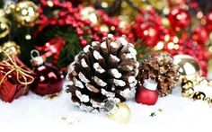 Christmas decoration – elegant deco ideas with cones - DIY CHRİSTMAS Natural Christmas, Mini Christmas Tree, Green Christmas, Rustic Christmas, Christmas Wreaths, Christmas Window Decorations, Holiday Decor, Decoration Table, Elegant