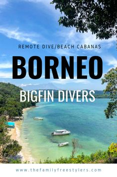 Bigfin Divers, a tiny dive resort on a remote jungle coastland, has simple cabanas, a private beach & incredible diving from KK Borneo Travel, Dive Resort, Kota Kinabalu, California Coast, Beautiful Islands, Lonely Planet, Diving, Remote, Tourism