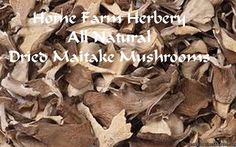 Maitake Mushrooms Dried, Order now, FREE shipping   When we learned how to grow Shiitake Mushrooms we went on to others and one of our favorites is the Maitake Mushroom which is also known as Hen-of-the-Woods, Sheep's Head, Ram's Head, Dancing Mushroom, King of Mushrooms, Monkey's Bench or Shelf Fungi We dry and hand pack this ingredient, an All Natural Gourmet Maitake Mushroom, to create a rich, intense mushroom taste and earthy aromatic flavor. Over the years of cooking with mushrooms we…