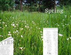 """Check out new work on my @Behance portfolio: """"Spring - wallpaper"""" http://be.net/gallery/34663803/Spring-wallpaper"""