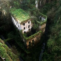 Deep Valley of the Mills, Sorrento, Italy. Abandoned in I can't believe that I have been to Sorrento three times and missed seeing this. on my list of places to see when next I travel to Italy. Abandoned Buildings, Abandoned Mansions, Abandoned Places, Haunted Places, Scary Places, Abandoned Detroit, Abandoned Amusement Parks, Hidden Places, Mysterious Places