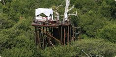 Lion Sands Treehouse House, Africa