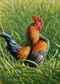 Le Aperitif - Rooster and Sunflower Painting by Texas Flower Artist Nancy Medina, original painting by artist Nancy Medina | DailyPainters.com