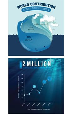 These are Info-graphics displaying the number of whales killed before and after the commercial whaling. (by Lydia Yang via Behance Network)