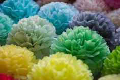 Rainbow tissue paper pompoms